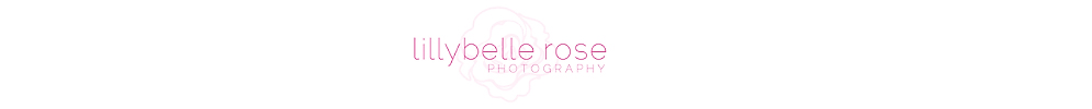 Lillybelle Rose Photography Blog | Chicago Newborn &amp; Child Photographer | Baby | Senior | Boudoir | Portrait Photographer | Chicagoland | Glen Ellyn | Naperville | Downers Grove | Wheaton | Hinsdale | Clarendon Hills | Oak Brook | Western Suburbs | Elmhurst logo