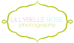 Lillybelle Rose Photography Blog | Chicago Newborn and