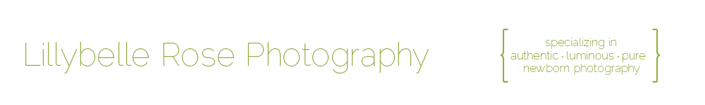 Lillybelle Rose Photography Blog | Chicago Newborn and Baby Photographer | Glen Ellyn Newborn and Baby Photographer |Western Suburbs Newborn and Baby Photographer  |  DuPage Newborn and Baby Photographer logo